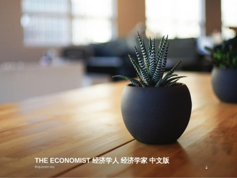 The Economist (in Chinese)