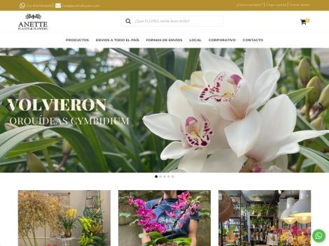 Tienda online de Anette Flowers