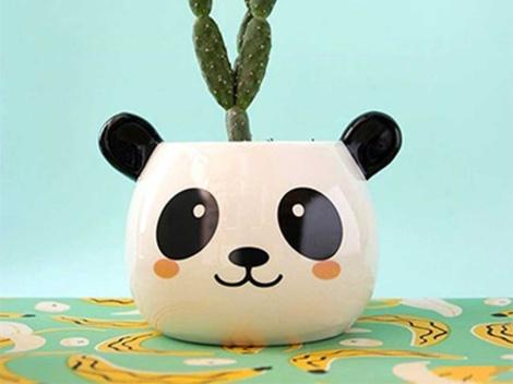 ¡Productos con Pandas!