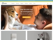 Petcube Coupon and Deals for November 2017